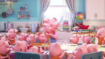 Sing-Rosita-with-piglets