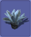 Largeplant