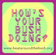 File:Hows your bush doing.jpg.opt239x237o0,0s239x237.jpg
