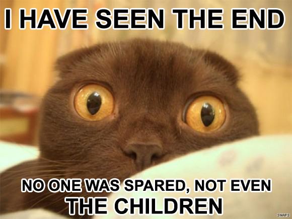 File:Funny animal captions-14.jpg