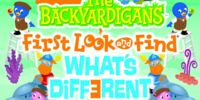 First Look and Find: What's Different?