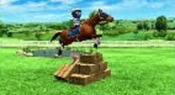 Jockey Dare