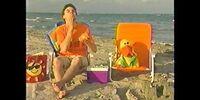 Summer with Joe