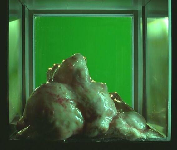 File:The Blob.jpg
