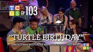 Turtle Birthday 0001