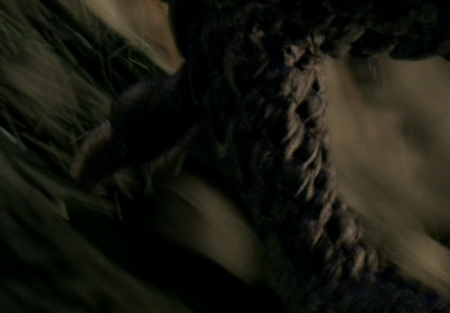 File:Hellhound-foot.png