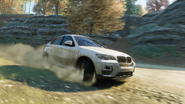 BMW X6 DIRT