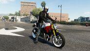 Ducati Monster STREET