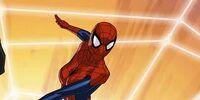 Spider-Girl/Gallery
