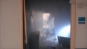 Paper's Room