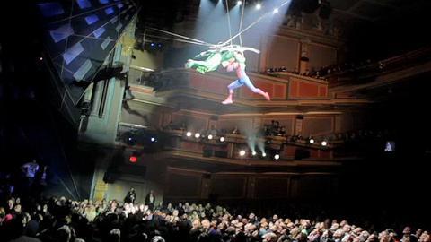 Spiderman audience