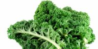 Kale (disgusting food that taste like gross stuff...)