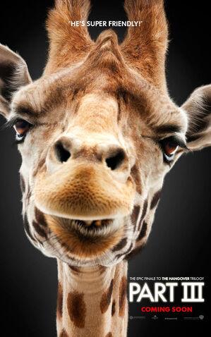 File:Alan giraffe.jpg