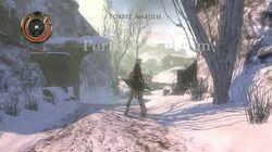 Forest Ambush