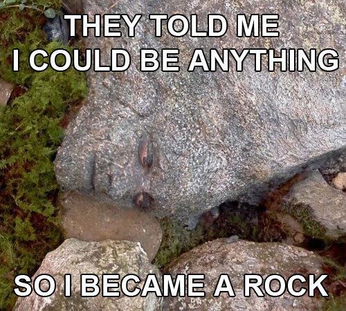 Memes-hunger-games-rock large
