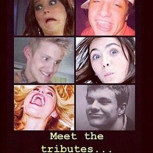 File:Meet the tributes....jpg