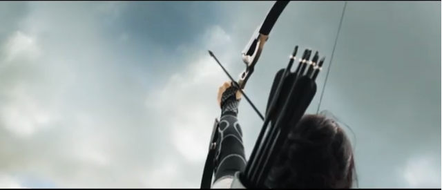 File:Katniss Force Field.png
