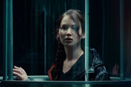 Katniss in tribute tube