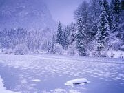 Frozen-Lake-Schnolzersee-Bavaria-Germany
