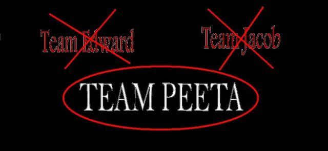 File:Hunger games team Peeta.jpg