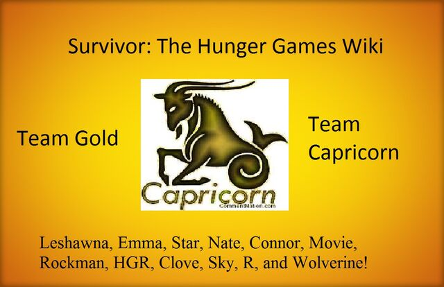File:Team Capricorn Poster.jpg