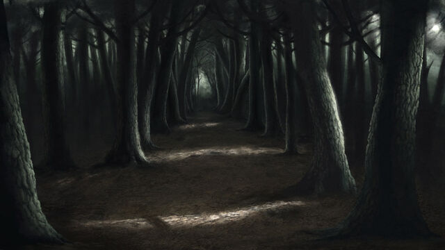 File:Creepy Forest.jpg