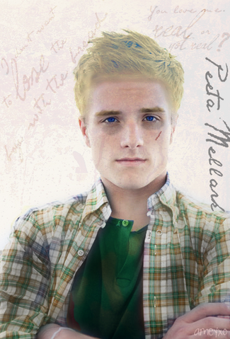File:Peeta-Mellark-the-hunger-games-movie-20756654-367-541.png