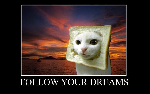File:Follow your dreams.jpg