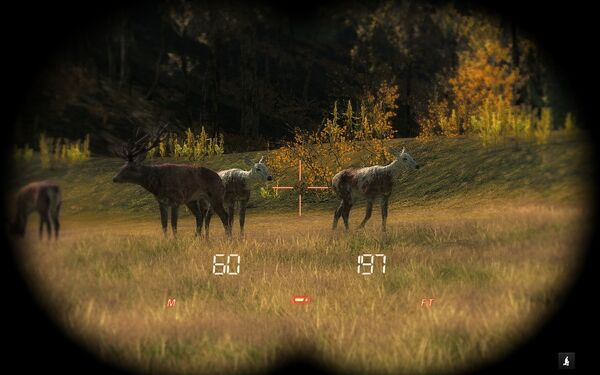 Monacosteve two piebald red deer cows