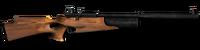 Air rifle 22