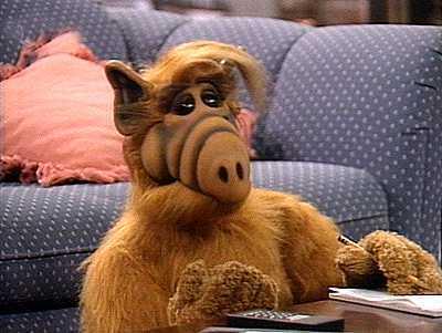 Alf11