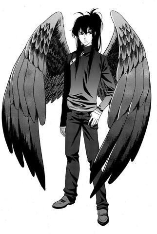 File:Manga-Fang-D-maximum-ride-1317769-1.jpg