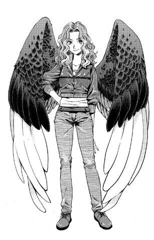 File:Manga-Max-maximum-ride-1317656-1026-1600.jpg