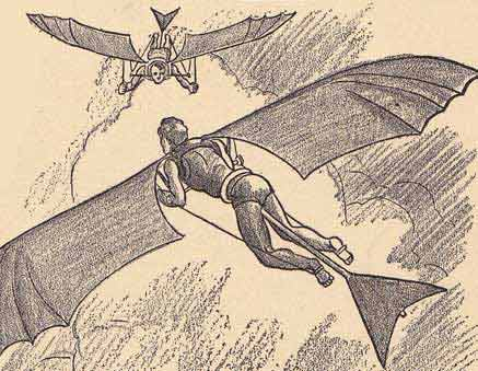 File:Moth309.jpg