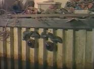 Guysborough'sGarbage118