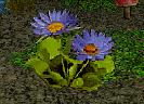File:Spritesbreath Flower.png
