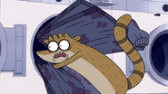 S5E09.018 Rigby Accidentally Breaking the Tants