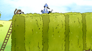 S7E11.101 Mordecai and Rigby Trimming the Hedges