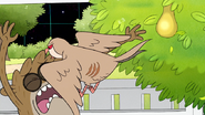 S8E23.150 Rigby Being Attacked by a Partridge