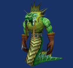 Seaweed image1