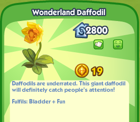 Wonderland Daffodil