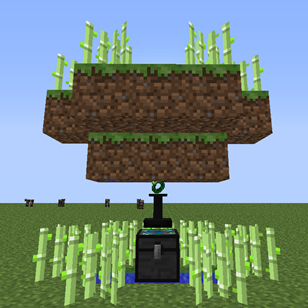 Test crop