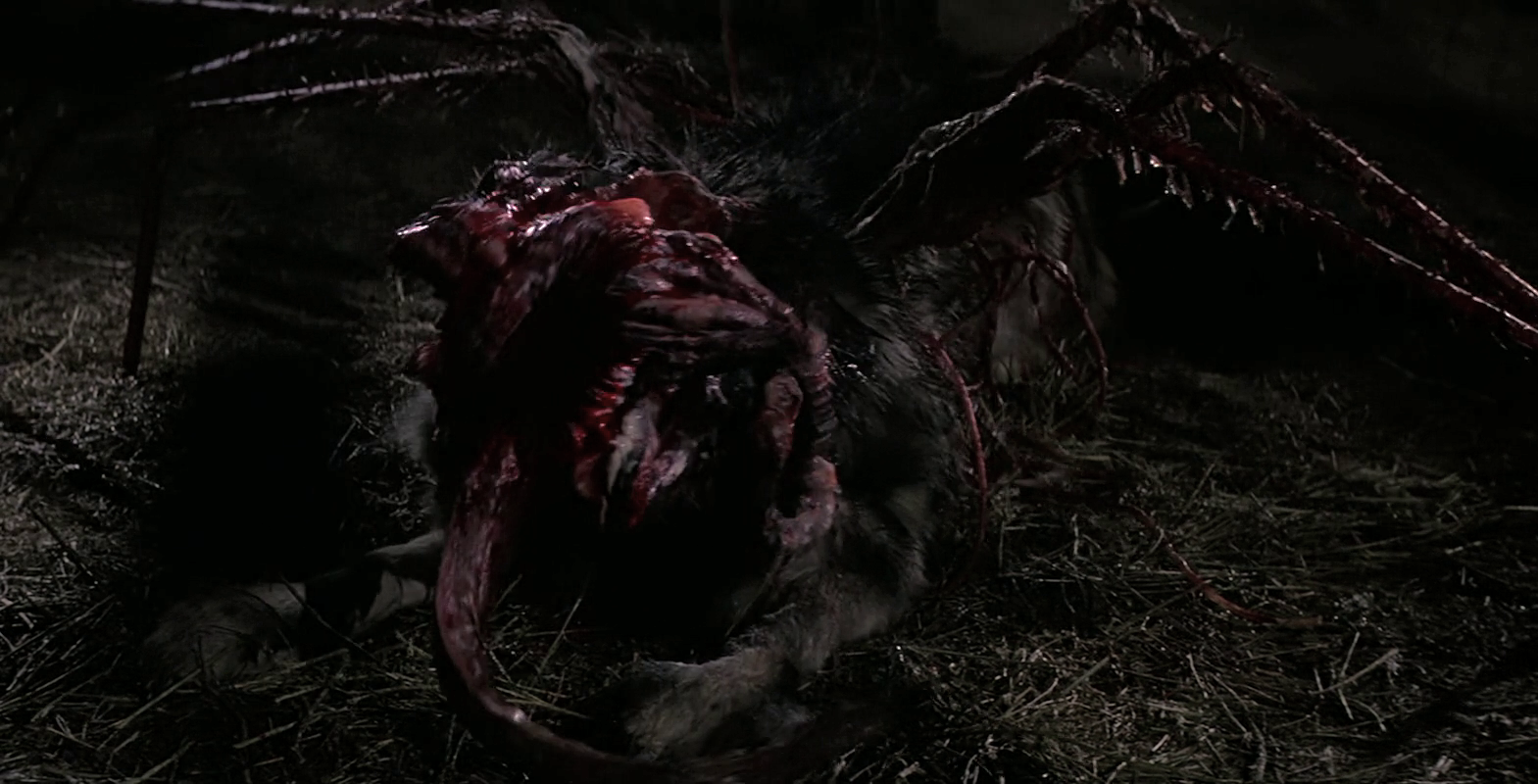 Image - The Kennel-Thing bursts out - The Thing (1982).png ...