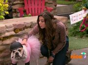 Phoebe and Doggin