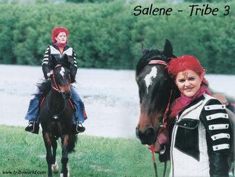Salenes3 (19)