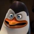 Kowalski Portrait