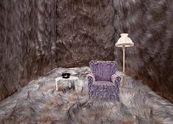 Very, Very Hairy Room