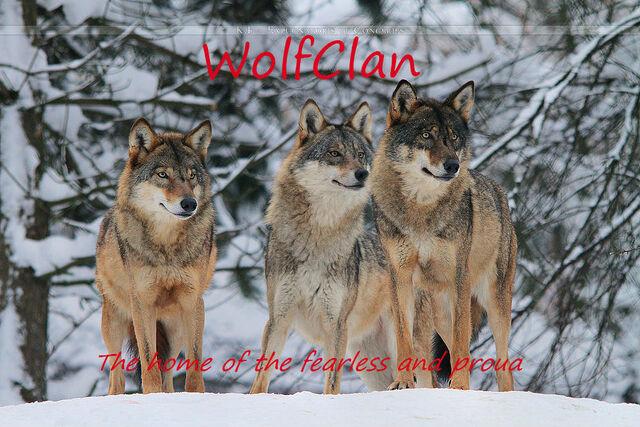 File:WolfClan by Khevyel.jpg