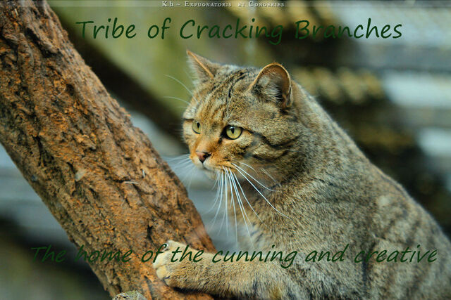File:Tribe of Cracking Branches by Khevyel.jpg