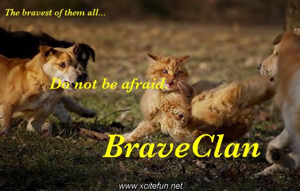File:BraveClan.jpeg